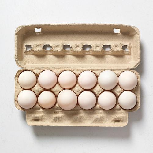 Duck Eggs -