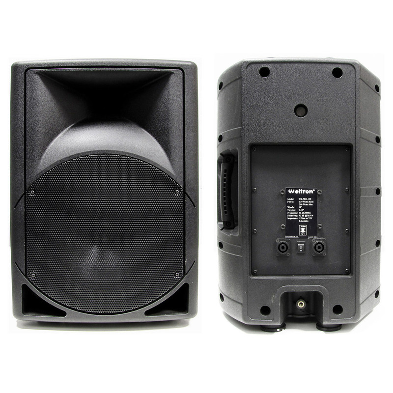 Pro-100 Indoor/Outdoor Speaker