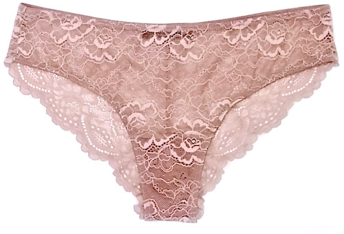 ALL LACE CLASSIC BRIEF JAVA