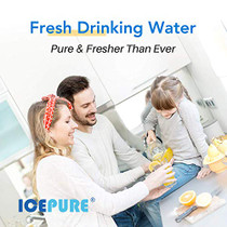 """ICEPURE 10""""X4.5"""",5 Microns Whole House Sediment Activated Carbon Water Filter Compatible with Dupont WFHDC8001,EP Series,EPM Series,CB-BB-10, GE FXHTC, GXWH40L, GXWH35F, GNWH38S, CTO10BB,1PACK"""