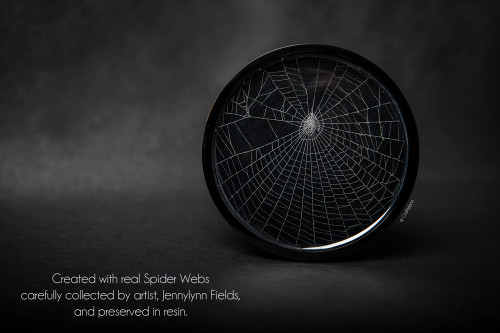 Spider Web Coaster
