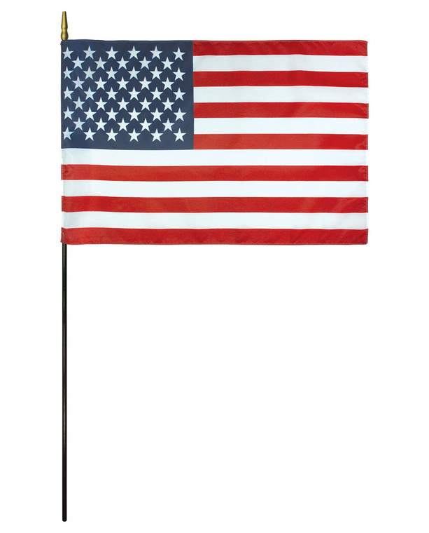 E-Gloss - American Flag on a Stick
