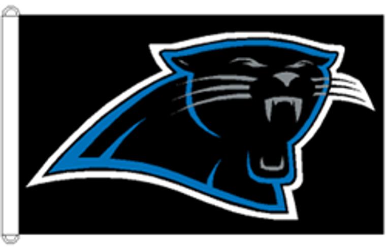Carolina Panthers Flag - 3' x 5'