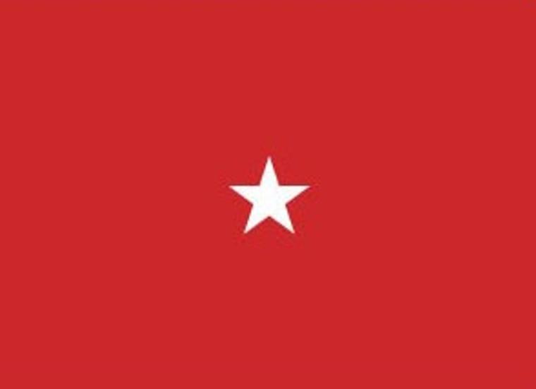 1 Star Army Officers 4''x 6'' E-Gloss Flag