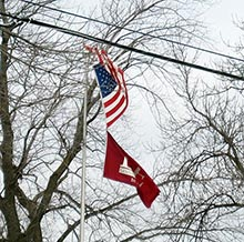 flag with tree damage