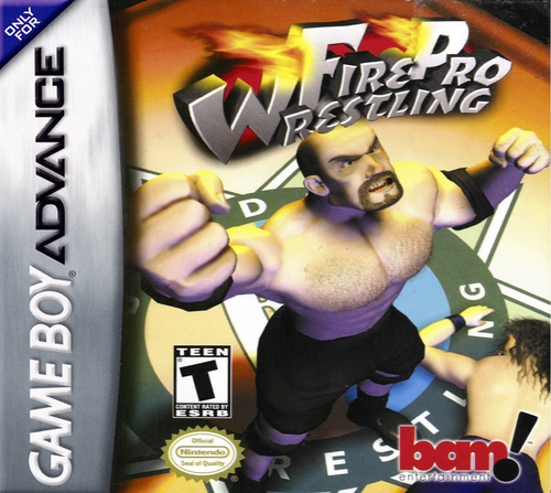 Fire Pro Wrestling 2 - GBA - USED - INCOMPLETE