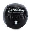 Sanguine Medicine Balls-6lb