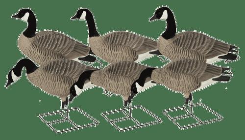 Avery GHG Pro-Grade XD Series Full Body Canada Goose – Harvester Pack