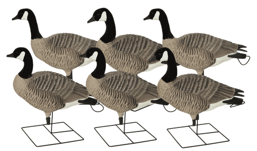 Avery GHG Pro-Grade XD Series Full Body Canada Goose – Active Pack