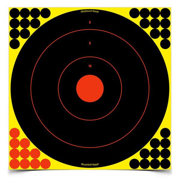 "Birchwood Casey Shoot-N-C 17.25"" Bulls-Eye 12 Targets/480 Pasters"