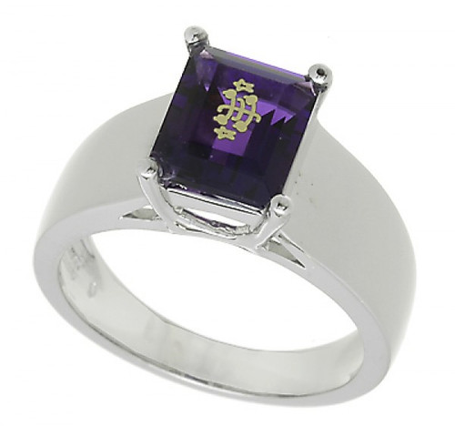 14K White Gold Wide Cathedral Multi-color Emerald Cut Baha'i Ringstone