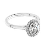 Luminous Silver Oval Halo Ring