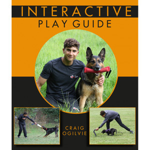 Interactive Play Guide by Craig Ogilvie