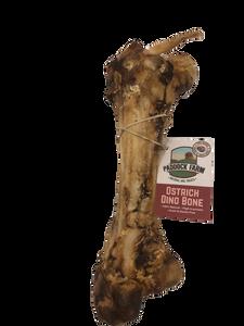 Ostrich Dino Bone