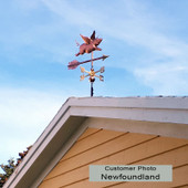 Small Flying Pig Weathervane Customer Photo of right side view on rooftop and blue sky background.