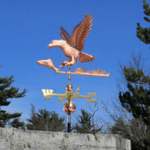 eagle and fish weathervane side view image