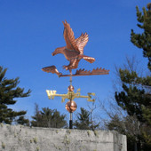 Eagle and Fish Weathervane left rear view on blue sky background