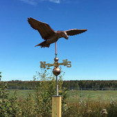 Soaring Eagle Weathervane front right view on blue sky background