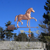 Appaloosa Horse Weathervane right angle view on blue sky background