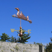 Loon and Chicks Weathervane left front angle on blue sky background