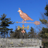 quail weathervane left side view on blue sky background