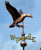 Landing Duck Weathervane right side view on blue sky background