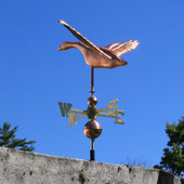 goose weathervane rear view on blue sky background
