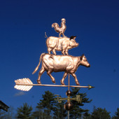 Large Barnyard Weathervane of rooster standing on a pig, with the pig standing on large cow right side view on blue sky background.