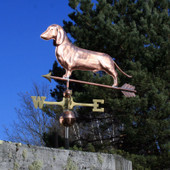 Dachshund Weathervane with ears down left front angle on blue sky background