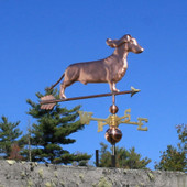 Dachshund Weathervane with ears flowing front view on blue sky background