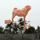 large copper pug weathervane  right side view on gray sky background