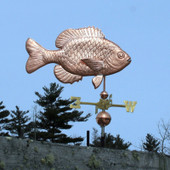 photo of sunfish weathervane side view on blue sky background