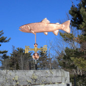 Trout Weathervane left side view on blue sky background