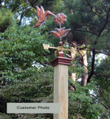 customer photo Hummingbird Weathervane on post