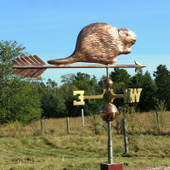 """Copper Beaver Weathervane on a 30"""" arrow is sure to please,  handmade to order from The Weathervane Factory this beaver weathervane will fit all our cupolas and mounts."""
