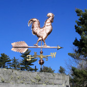 Large Walking Rooster Weathervane right angle view on blue sky background.