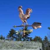 Large Walking Rooster Weathervane left rear view on dark blue sky background.