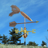 Carrot Weathervane on an arrow right front side view on blue sky background.