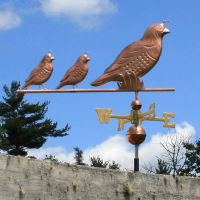 quail weathervane side view on blue sky background image