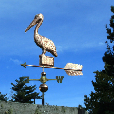 Pelican on a Post Weathervane left front side view on blue sky background