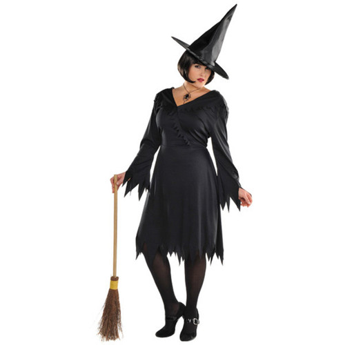 Wicked Witch Women's Plus XXL 18-20 Costume