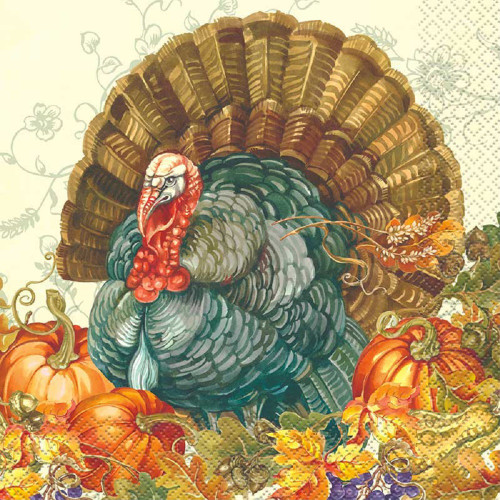 Traditional Thanksgiving Turkey 16 Ct Lunch Napkins
