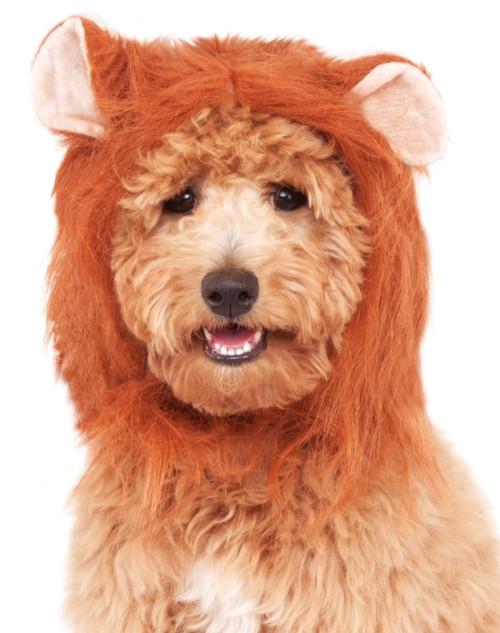 Lion's Mane Small Medium Dog Pet Costume Rubies Pet Shop