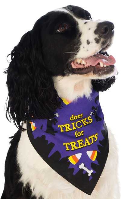 Trick or Treat Bandana Medium Large Dog Pet Costume Rubies Pet Shop
