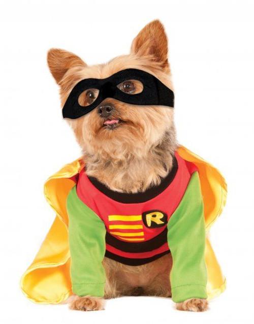 Robin Teen Titans Small Dog Costume Rubies Pet Shop