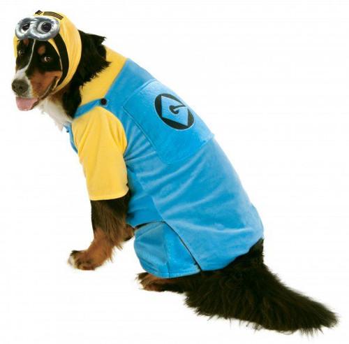 Big Dogs Minion XXL Pet Costume Dog 2X Rubies Pet Shop