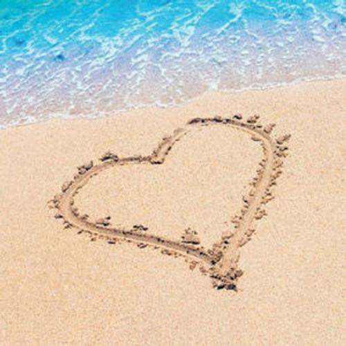 Beach Love 16 Beverage Napkins Wedding Bridal Shower Luau Party