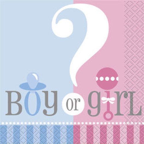 Gender Reveal Party Girl Boy ? Baby Shower Napkins Lunch Large 20 ct