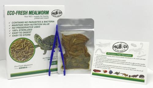 ProBugs Mealworm Box