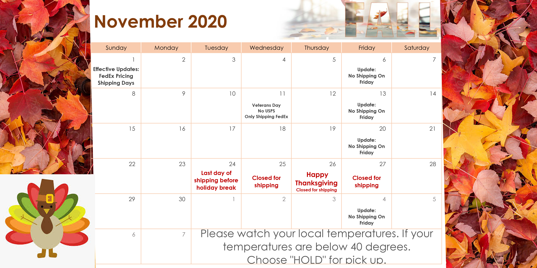 november-2020-ready-10.28.20202.jpg